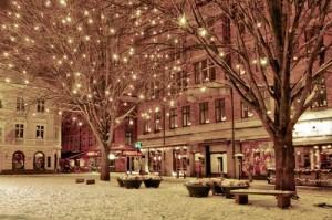 poza de decembrie